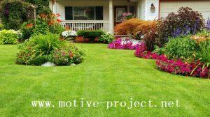 Perkembangan Projek Pekarangan Rumah