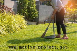 Perkembangan Projek Pekarangan Rumah Di Indonesia
