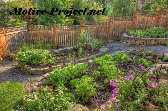Pilihan Desain Pemanfaatan Berkebun di Pekarangan Rumah